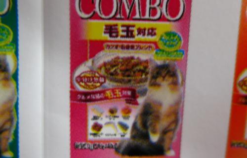 kari8_convert_20091021153530.jpg