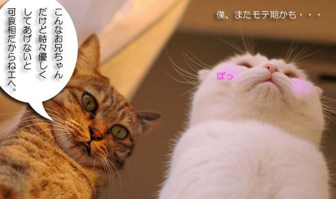 mufufuのコピー