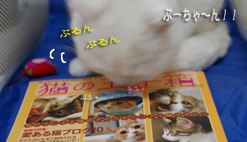 ぷーちゃんすきコピー