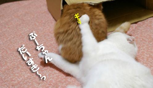 ぷーちゃーーーんのコピー