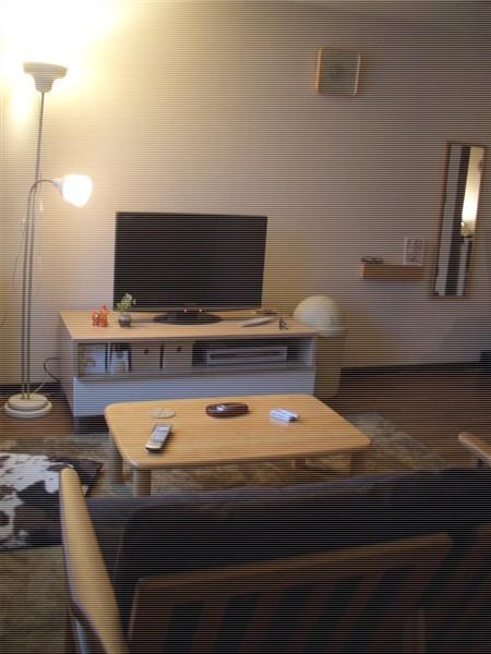sofa3.jpeg