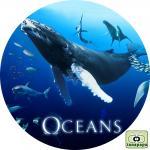 オーシャンズ ~ OCEANS ~
