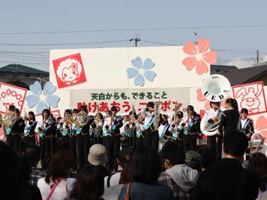 ueda_sakura2011 443