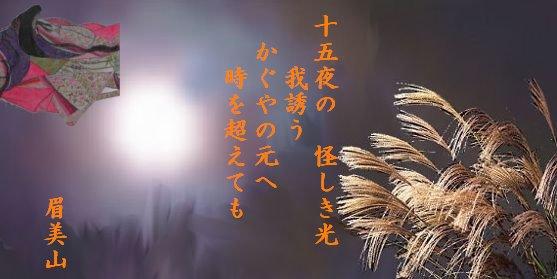 白狐ミミさん2