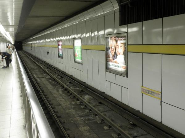 P1298707.jpg