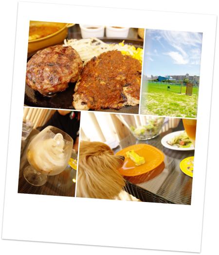 Foodpicture.jpg