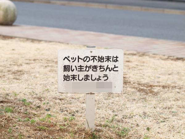 P2094673.jpg