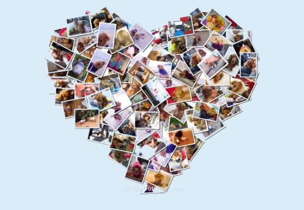 heart_blog2.jpg