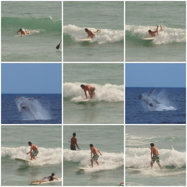 surf_20110211180622.jpg