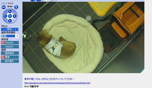 tatsu2_20100118191230.jpg