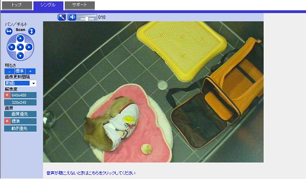 tatsu_20100117174139.jpg