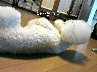 moblog_0775721c.jpg