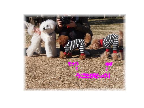 yuzu_20120127081053.png