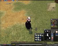 mabinogi_2009_06_21_002.jpg