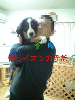 100210_2214~0001-0001.jpg