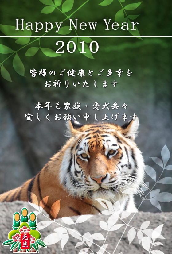 10hagaki_tora129_si.jpg
