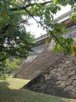 石垣の曲線