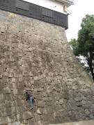 美しい石垣に・・・