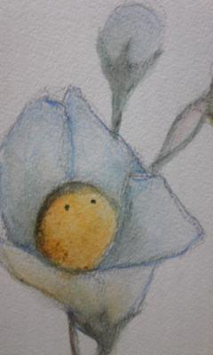 色鉛筆で描いてみました