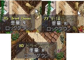 WS005423.JPG
