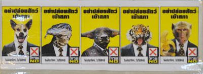 animals no vote