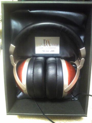 dx10008 (3)