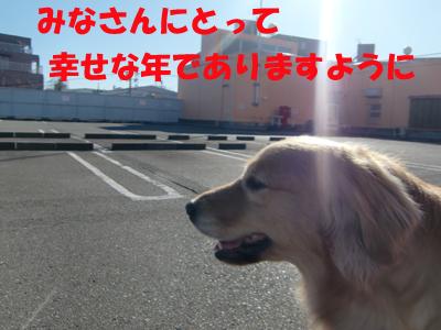 ウィンちゃんより