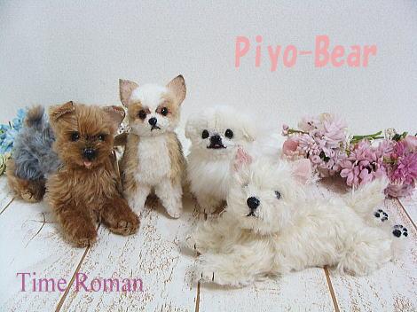 Piyo-Bear.jpg