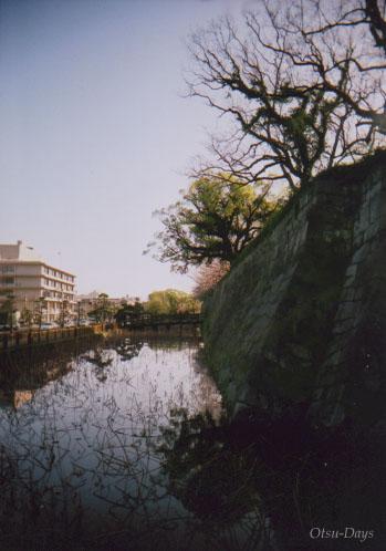 春の鶴丸城