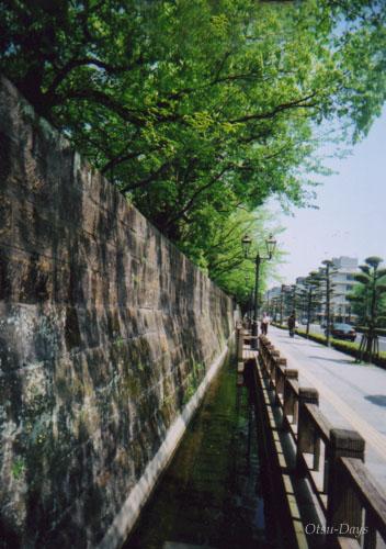 春の鶴丸城2