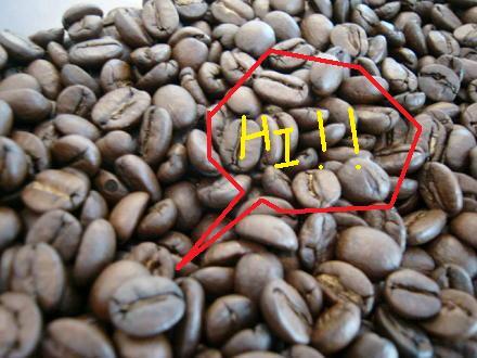 コーヒー豆はかく語りき
