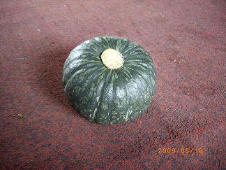 2009_0618かぼちゃ0026sono2