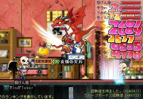Maple!0028.jpg