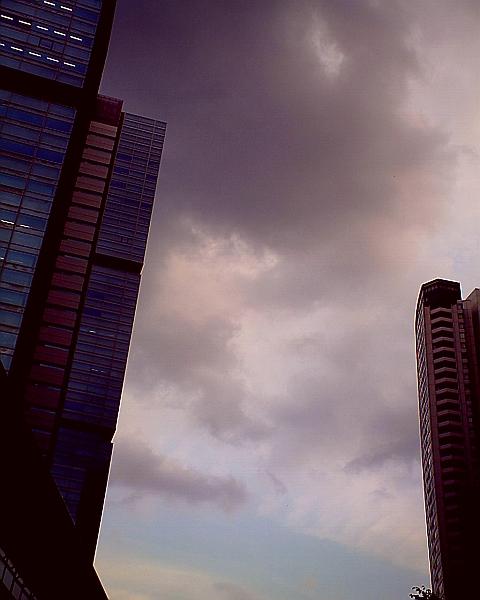 20090211.jpg