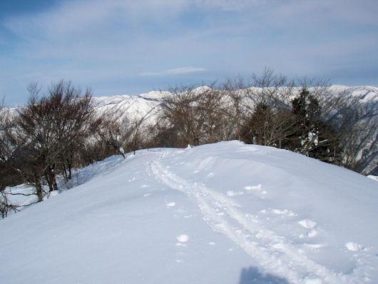 小津権現山 09