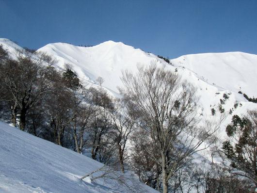 5野谷荘司山 013