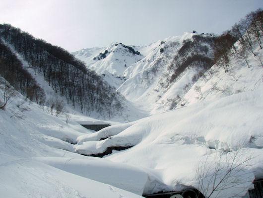 14野谷荘司山 044