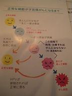 子宮頸がん3