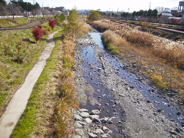 初冬の水無川97