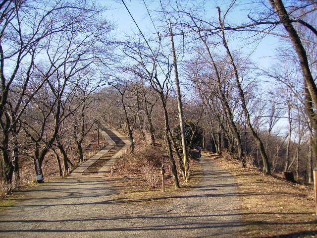 権現山の坂道21
