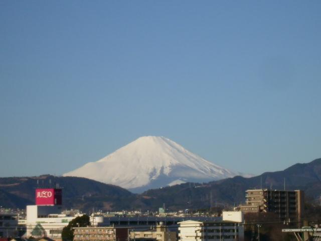 白富士306