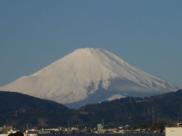 白富士305