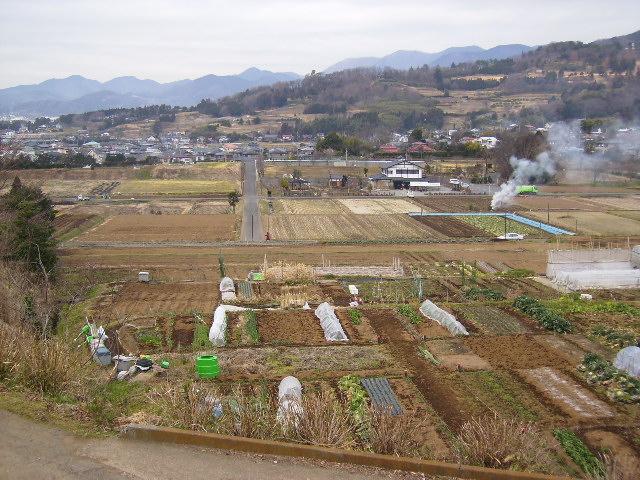 冬の田原盆地23