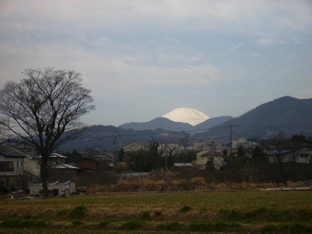 白富士16