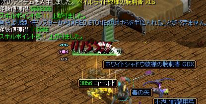 091112エルフ王2