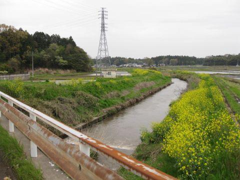 園部川と郡橋