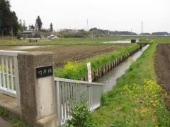 竹原橋と花野井川