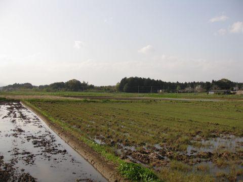 堅倉の田園風景