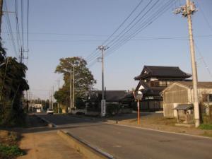 旧道桜並木