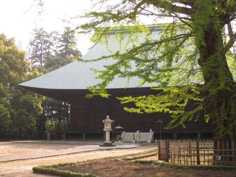 薬王院本堂